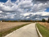 fall stroll 1